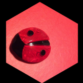 Ladybird or Ladybug Brooch by Lea Stein Paris (Sorry SOLD)